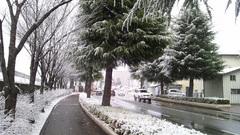 20121127_3.jpg